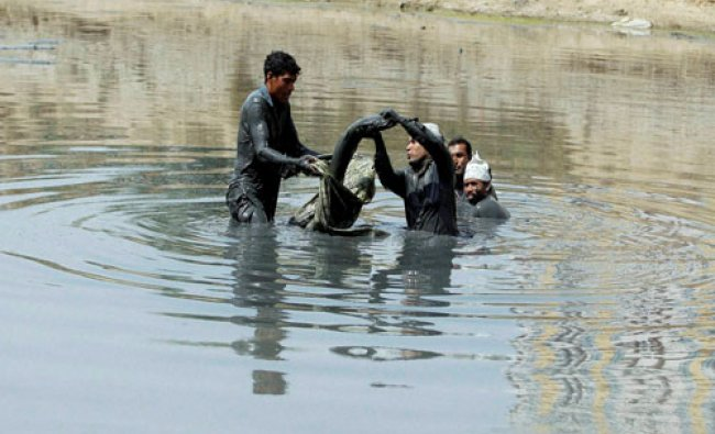 Municipal workers remove a fish from Ratanpura lake to leave in Sabarmati River....