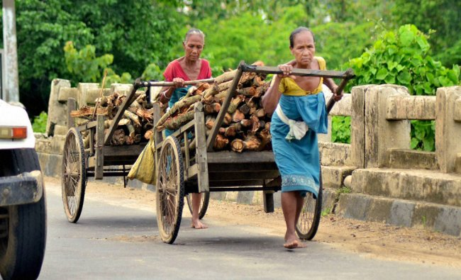 Women carrying firewood on a handcarts at Boko in Kamrup district of Assam on Wednesday...