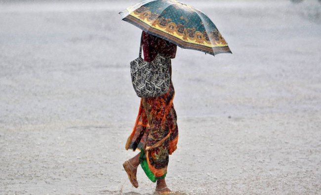 A woman walks along a road during heavy rains in Agartala...