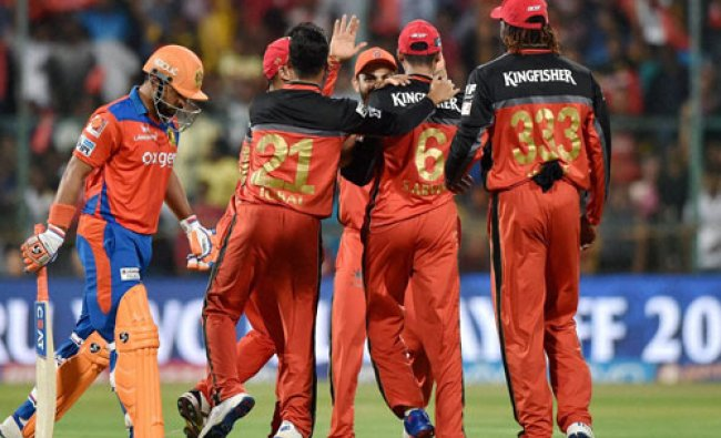 Royal Challengers Bangalore\'s players celebrate the wicket of Suresh Raina...