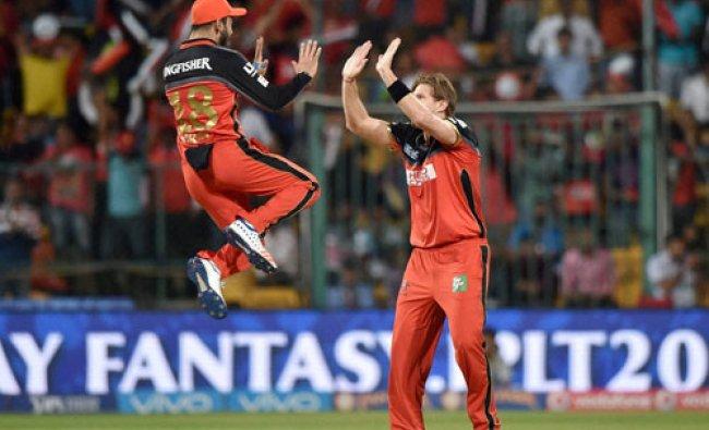 Royal Challengers Bangalore\'s Shane Watson with Virat Kohli celebrates the wicket....