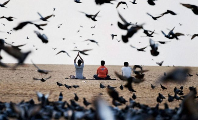 Yoga practitioners perform yoga on the \'2nd International Yoga Day\' at Marina Beach in Chennai...