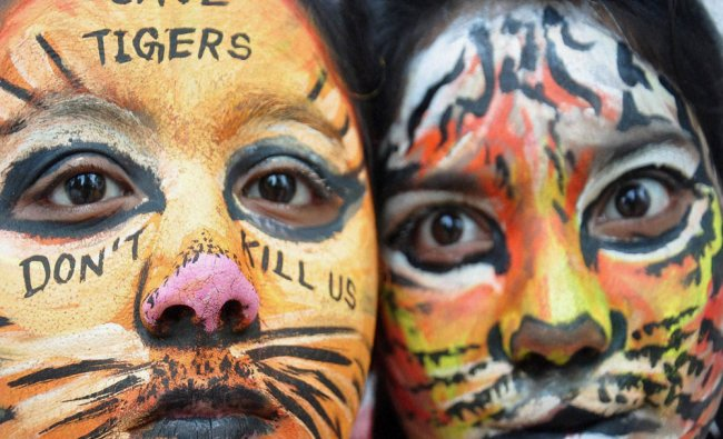 School students take part in an awareness event on the eve of International Tiger Day...