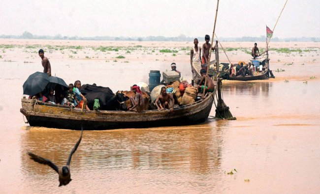 People with their cattles shifting to a safer place as their houses submerged with flood water...