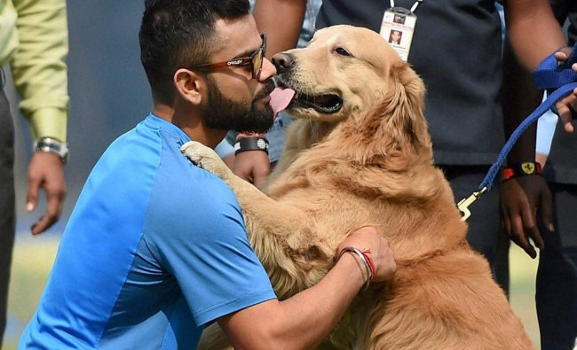 India\'s Virat Kohli in a playful mood with a security dog during a practice session in Pune...