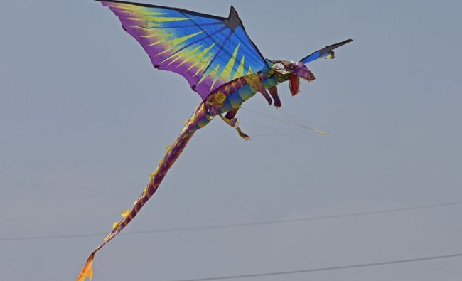 People are participated in Kite Festival organised by Rotary Bangalore Lakeside at HSR Layout...