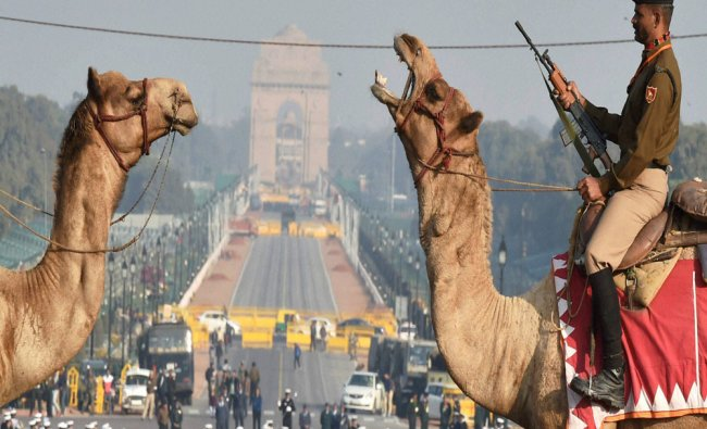 Camel-mounted BSF soldiers participate in rehearsal for the Beating Retreat ceremony...