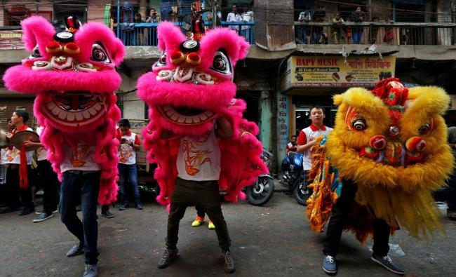 Members of the Chinese community perform a lion dance as they take part in celebrations...