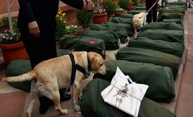 Security persons with sniffer dogs inspecting the bundles containing the copies...