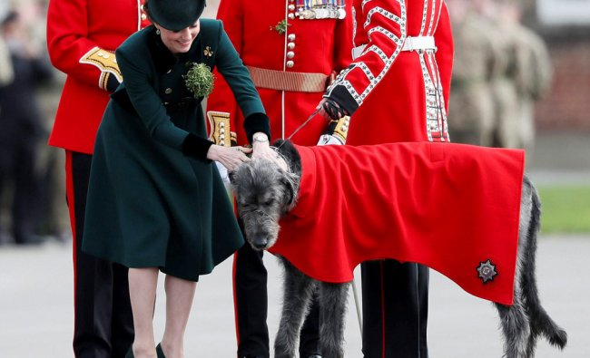 Britain\'s Kate,The Duchess of Cambridge, strokes Domnhall the Irish Wolfhound Mascot, at the...