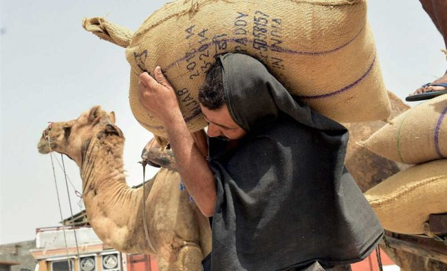 A laborer carries a sack of grain at a market on the eve of International labour day, in Bikaner...
