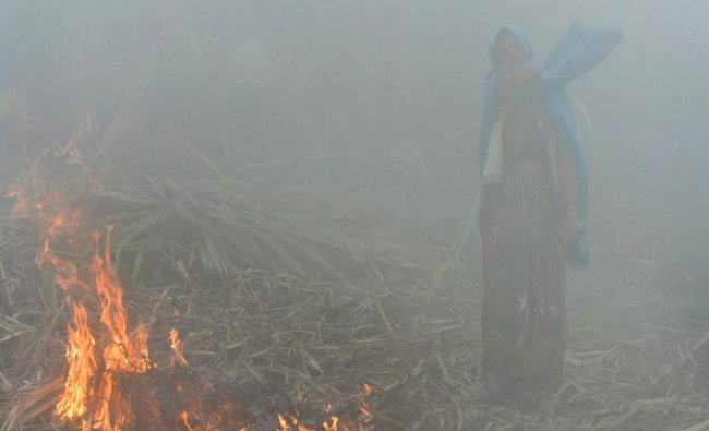 A farmer burns the residue of her sugarcane crop at her farm on a cold foggy morning...