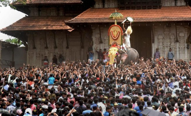 Elephant Thechikottukavu Ramachandran opens the door of the southern Gopuram of the Vadakkumnathan temple to formally begin the Thrissur Pooram on Tuesday. PTI Photo