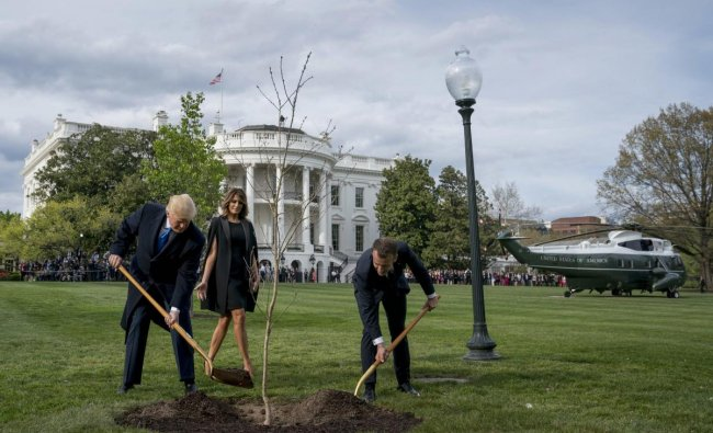 First lady Melania Trump watches as President Donald Trump and French President Emmanuel Macron participate in a tree planting ceremony on the South Lawn of the White House in Washington. AP/PTI Photo