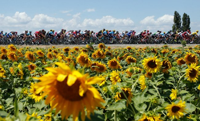 The peloton in action during stage 14 of the Tour de France. (Reuters Photo)