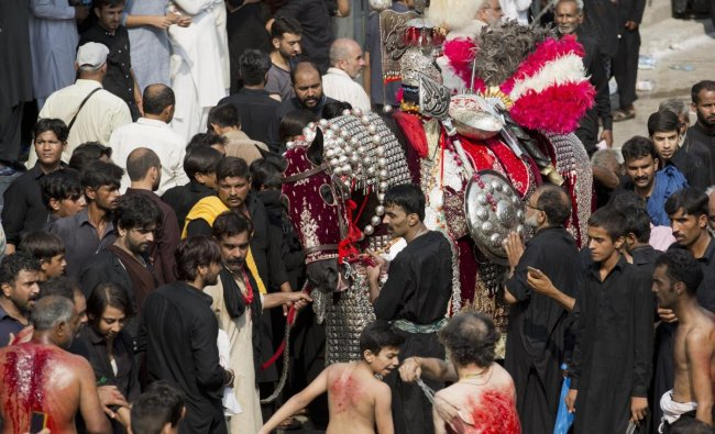 Rawalpindi : Shiite Muslims flagellate themselves with knives on chains near Zul Jinnah, a horse symbolizing the horse that Shiite spiritual leader Imam Hussein used to fight against his enemy in the historic battle of Karbala, during a procession to mark Ashoura in Rawalpindi, Pakistan, Friday, Sept. 21, 2018. Muharram is a month of mourning in remembrance of the martyrdom of Imam Hussein, the grandson of Prophet Mohammed. AP/PTI