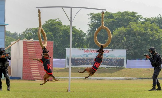 NSG Commandos display their skills to counter terror attacks during their 34th Raising Day function on the NSG Campus, in Manesar near Gurugram. PTI