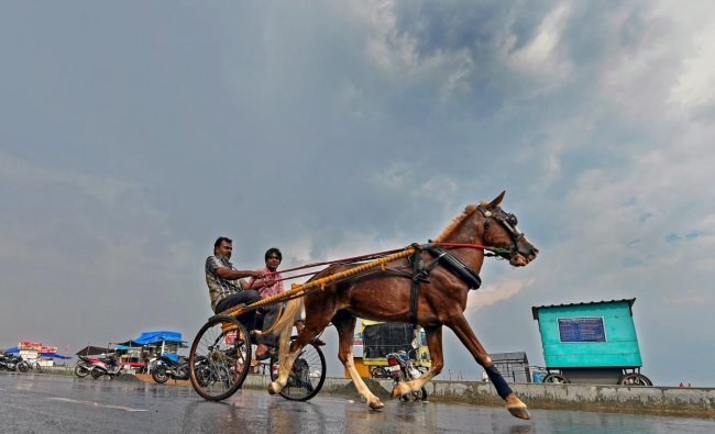 People ride a horsecart after rainfall in several parts of the city, near Marina beach in Chennai. PTI