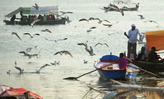 Pilgrims enjoy a boat ride as sea gulls fly at Sangam in Allahabad on October 29, 2018. (Photo by SANJAY KANOJIA / AFP)
