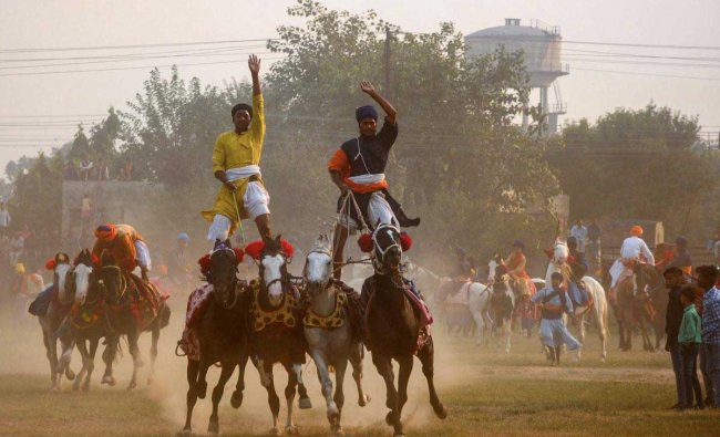 Nihangs or Sikh religious warriors display their horse-riding skills during celebration of the \'Fateh Divas\' or \'Victory Day\', in Amritsar, Thursday, Nov 8, 2018. The day is celebrated a day after the Diwali festival to mark the arrival of sixth Sikh Guru Hargobind in Amritsar after his release from the Gwalior fort. (PTI Photo)