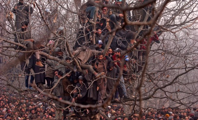 People sit in a tree as they wait to offer funeral prayers for Mohd Waseem Wagay, a suspected militant, who according to local media was killed in a gun battle with Indian security forces, at Amshipora village in south Kashmir\'s Shopian district November 25, 2018. REUTERS/Danish Ismail