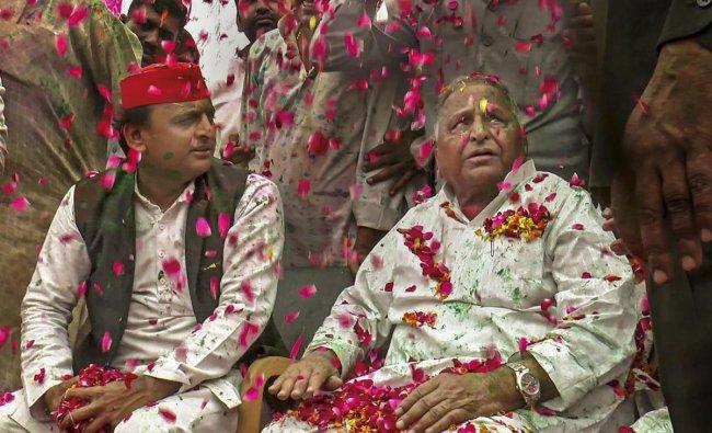 Samajwadi Party President Akhilesh Yadav with SP founder Mulayam Singh Yadav during Holi celebrations, at their native place in Saifai. (PTI Photo)
