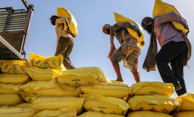 Workers load fertilizer bags on a truck, on the eve of Labour Day also known as May Day, in Amritsar. (PTI Photo)