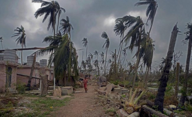A woman walks past the damaged structure and uprooted trees in the aftermath of cyclone \'Fani\', at Amphi Theatre, Raghurajpur village, in Puri district, Friday, May 10, 2019. (PTI Photo)