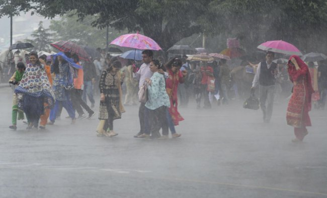 Pedestrians use umbrellas to protect themselves from heavy rainfall, in Shimla, Friday, July 5, 2019. (PTI Photo)