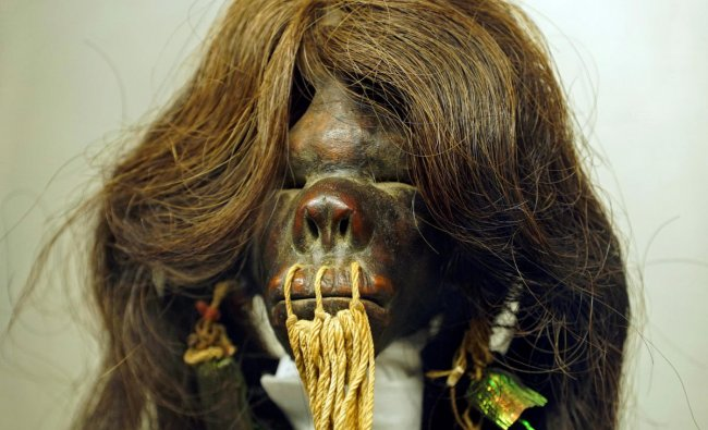The shrunken head of an Amazon warrior, known locally as a \