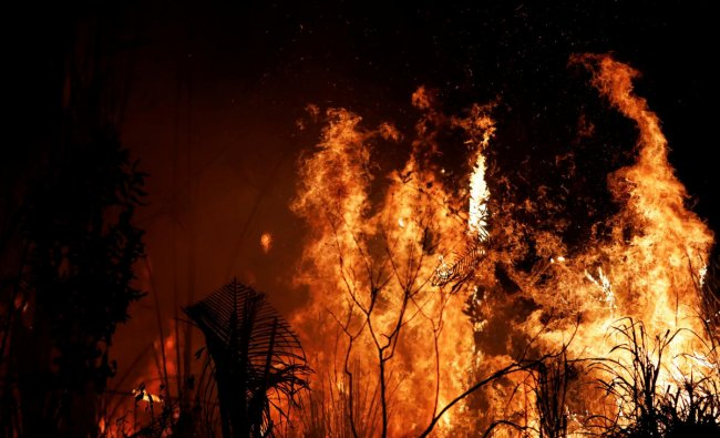 A fire burns a tract of Amazon jungle as it is cleared by loggers and farmers near Altamira, Brazil (Reuters Photo)