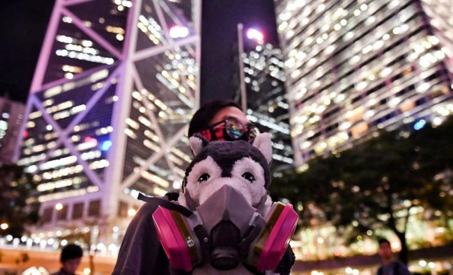 A dog owner holds a stuffed dog in a gas mask during the Veterinary Groups Say No To Tear Gas rally at Chater House in Hong Kong on August 30, 2019. (AFP Photo)