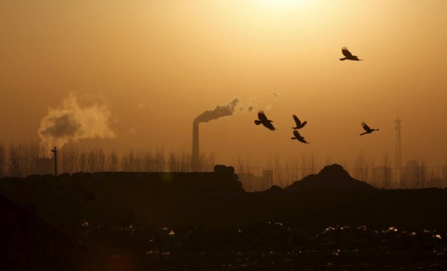 Birds fly over a closed steel factory where chimneys of another working factory are seen in background, in Tangshan, Hebei province, China (Reuters Photo)