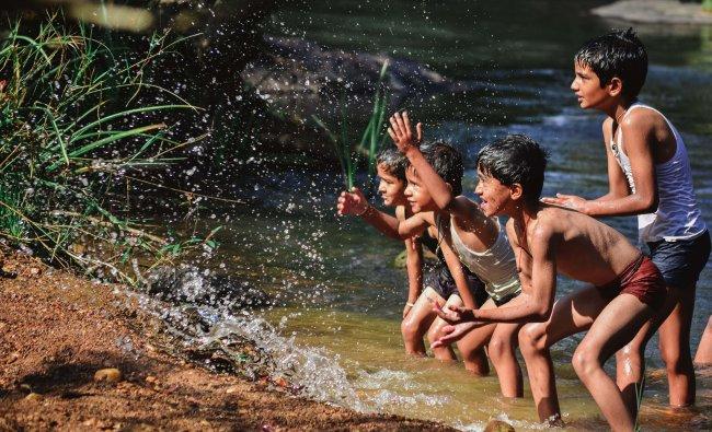 Photo by Gautam M Marihal