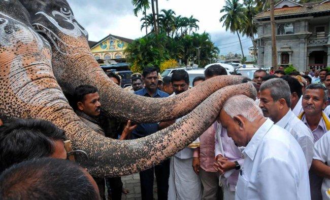 Karnataka Chief Minister BS Yediyurappa seeks blessings from elephants during his visit to Shringeri Sharadamba Temple, at Sringeri near Chikmagalur. PTI