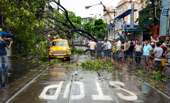 A taxi trapped under an uprooted tree after rainfall and heavy thunderstorm, in Kolkata, on Friday.
