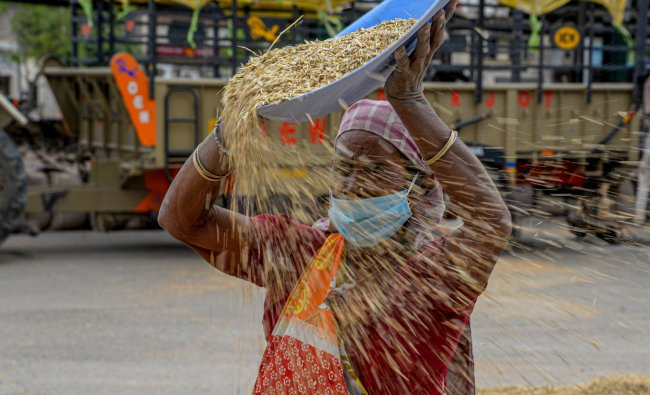 A woman wearing a mask winnows wheat grain at a market, during a government-imposed nationwide lockdown as a preventive measure against the spread of coronavirus, in Jalandhar. (PTI Photo)