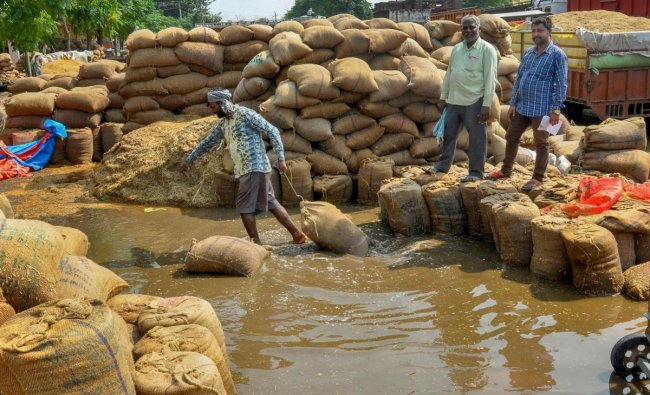 Workers move rice sacks after flooding at a grains market following heavy rains, in Amritsar.(PTI photo)