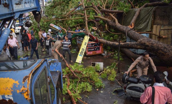 Workers cut the branches of an uprooted tree that fell on a shop to clear the pathway after a heavy storm, in Jabalpur on Friday, June 07, 2018. PTI Photo