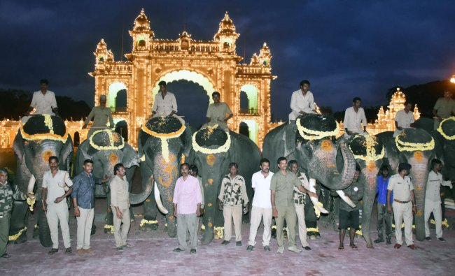 The second batch of Dasara elephants on their arrival on the Mysuru Palace premises, in Mysuru, recently. (DH Photo)