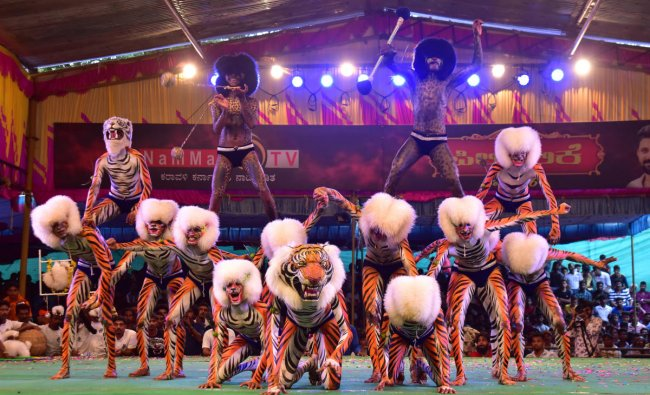 Tiger model dancers perform at Pilley competition in Mangalore.