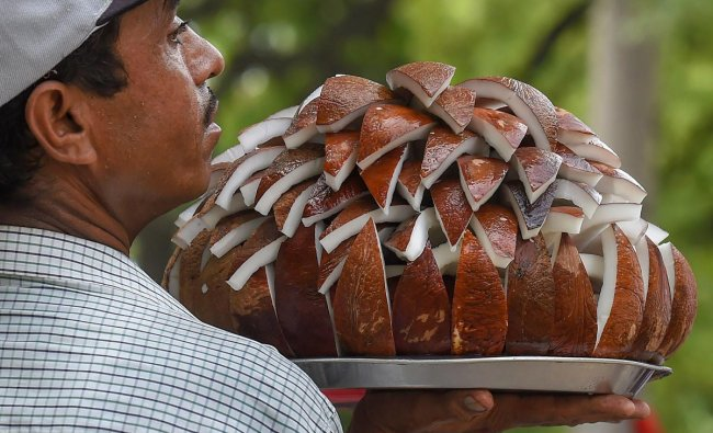 A street vendor selling coconut slices looks for customers, at Jantar Mantar in New Delhi on Friday. PTI Photo