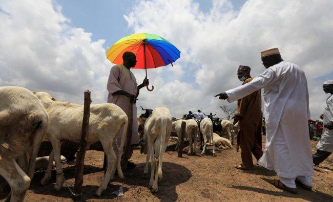 Men are seen at a livestock market, ahead of Eid al-Adha, amid the spread of the coronavirus disease in Abuja, Nigeria. Credit: Reuters Photo