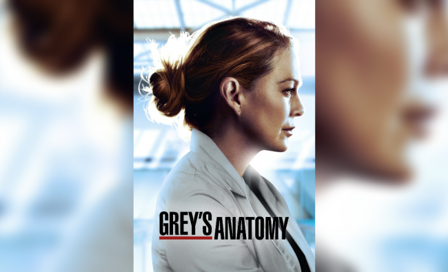 Grey\'s Anatomy   In the opening scenes of the latest season of long-running hospital drama Grey\'s Anatomy,Meredith Grey enjoys a quiet moment alone on a beach. She suddenly emerges from the dream, exhausted, in full PPE, in a frantic emergency room.Credit: Wikimedia Commons