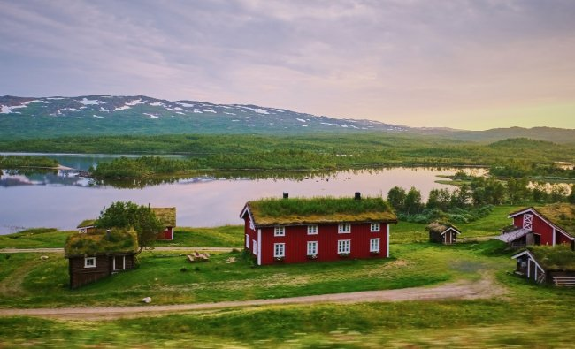 Sweden: With an EPI of 78.7, Sweden has secured the eighth spot on the list. Credit: Unsplash/Jessica Pamp