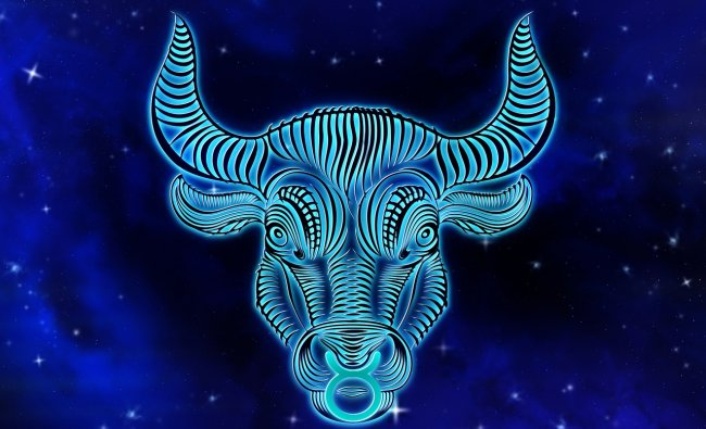 Taurus | You may want to stay in the background today. The moon brings cheer. Travel plans need working out. Past problems and future hopes clash. Friends prove supportive | Lucky Colour: Tan | Lucky Number: 2 | Credit: Pixabay Photo