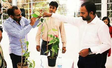 Singing trees? Device captures their notes | Deccan Herald