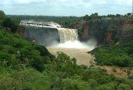 In the cradle of nature in Uttara Kannada