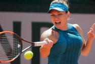 Halep to take on Stephens in final
