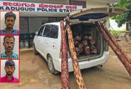 The car and the 872-kg Red Sanders seized by the Kadugodi police.